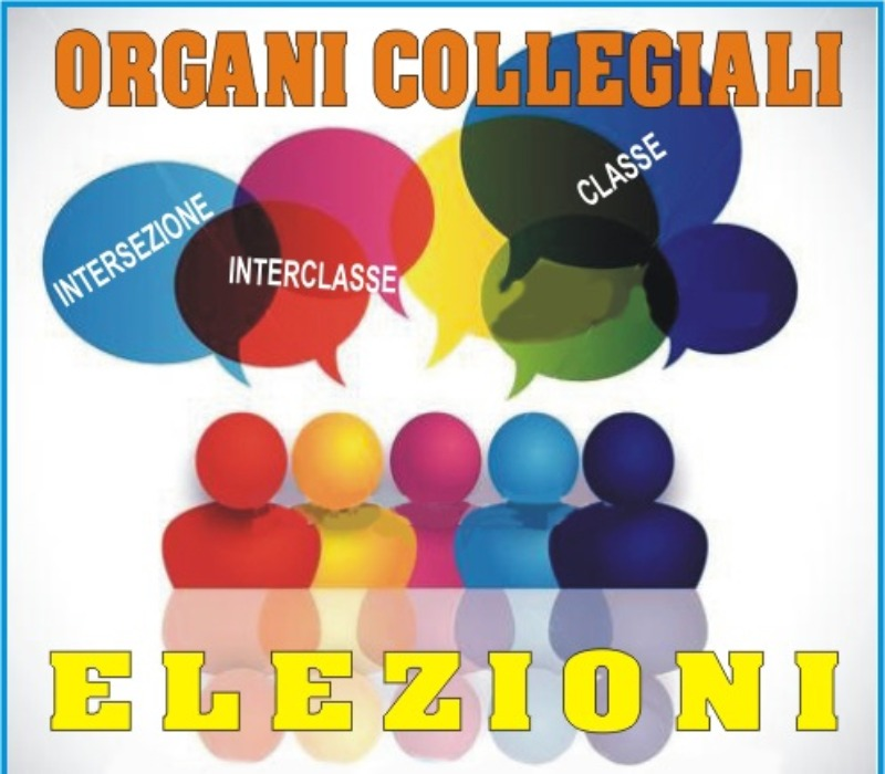 VIDEO  ESPLICATIVO -Votazione online  Capraro